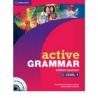 Active Grammar Level 1  +CD-ROM (no answers)