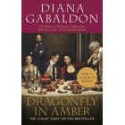 Dragonfly In Amber         {USED}